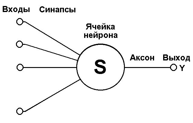 Математическая модель нейрона